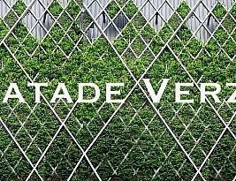 Impactul fațadelor verzi asupra clădirilor